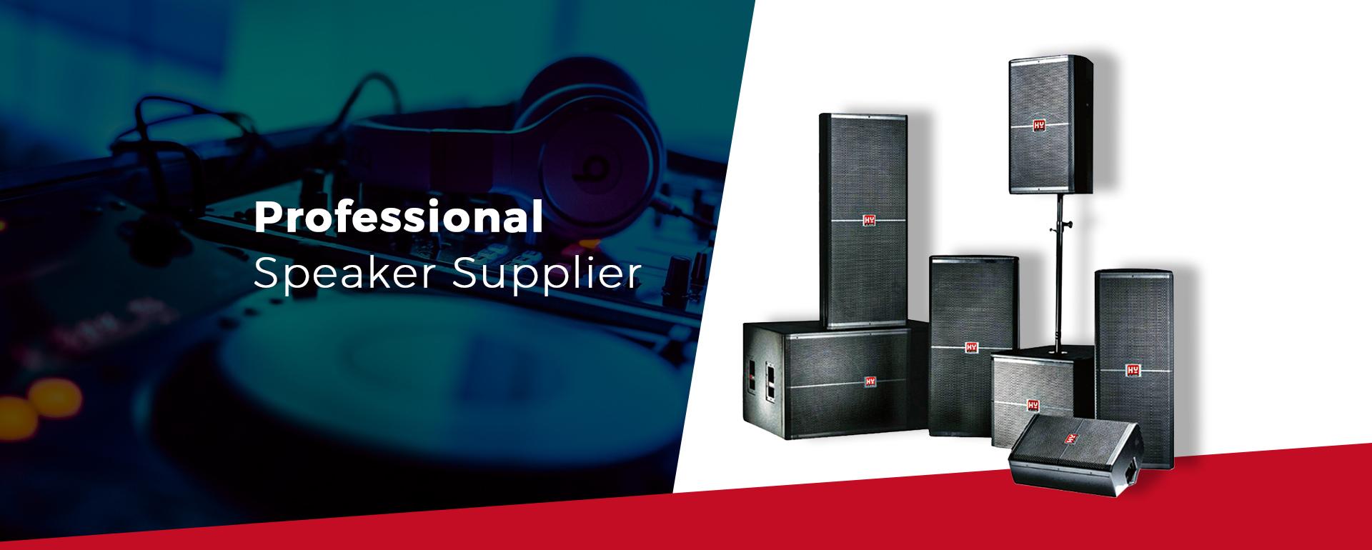 professional audio supplier